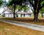 10811 Browning Road, Lithia image