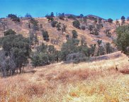 Marlar, Squaw Valley image
