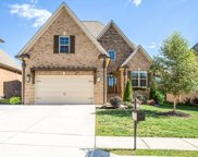 7004 Brindle Ridge Way, Spring Hill image
