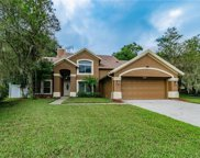 16104 Canton Court, Tampa image