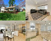 4450 EXETER STREET, Annandale image