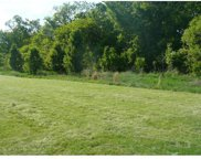 17455 Wild Horse Creek, Chesterfield image