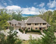 433  Coopers Hawk Drive, Asheville image