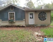 330 Florida Rd, Pell City image