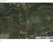 Co Rd 21 Unit 233+/- Ac, Ashville image