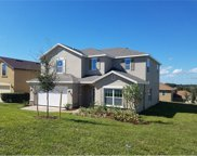 9509 Royal Vista Avenue, Clermont image