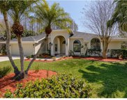 1003 Chillum Court, Safety Harbor image