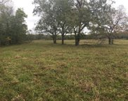 TBD 125 (+/-) acres Fm 1322, Luling image
