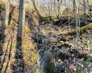 00 Bearpaw Ridge, Franklin image