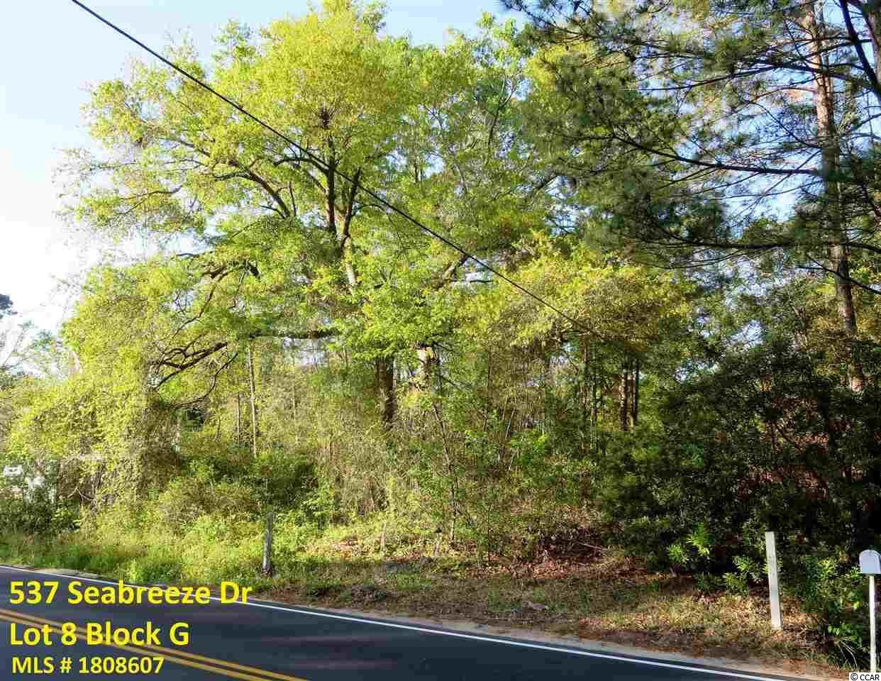 541 Seabreeze Drive, Garden City Beach , 29576
