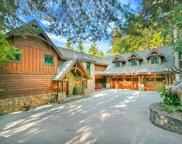 29130  Bald Eagle, Lake Arrowhead image