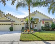 3516 Woodridge Place, Palm Harbor image