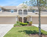7460 Terrace River Drive, Temple Terrace image
