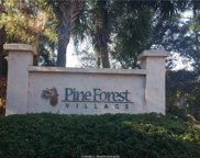 25 Pine Forest Drive, Bluffton image