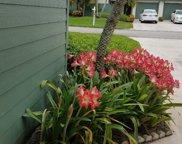 6765 SE Bunker Hill Drive, Hobe Sound image