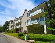 15330 Sunwood Blvd Unit 102, Tukwila image