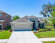 19222 Early Violet Drive, Tampa image