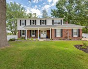 249 Ranchmoor, Ellisville image