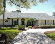 1508 Seasons Point Court, Apopka image