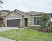 9025 Mountain Magnolia Drive, Riverview image