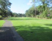158 Locust Fence  Road, Dataw Island image