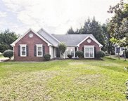 4178 Chatham Point Way, Buford image