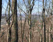5.5 Acres Off Co Rd 875, Etowah image