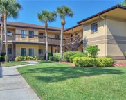 2664 Sabal Springs Circle Unit 105, Clearwater image