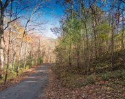 LT 5 White Oak Forest, Hiawassee image