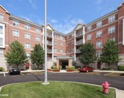 153 Pointe Drive Unit 205, Northbrook image