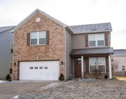 10673 Brighton Knoll S Parkway, Noblesville image