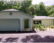 1698 N Goodman Road, Kissimmee image