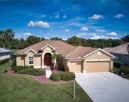 1556 Palmetto Palm Way, North Port image