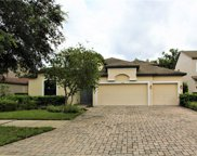 3404 Majestic View Drive, Lutz image