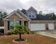 994 Henry James Dr., Myrtle Beach image