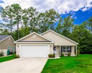 359 Sea Turtle Dr., Myrtle Beach image