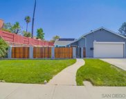 10875     Buggywhip, Spring Valley image