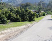 16828 South Mountain Road, Santa Paula image