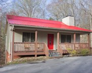 414 Laurel Trace Rd, Townsend image