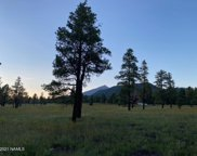 3353 N Cazadero Trail, Flagstaff image