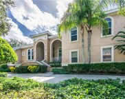 1146 Skye Lane, Palm Harbor image