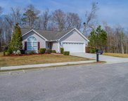 1002 Snowberry Drive, Longs image