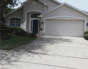 647 Bridge Creek Boulevard, Ocoee image