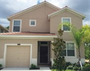 8812 Bamboo Palm Court, Kissimmee image