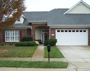 10025  Dominion Village Drive, Charlotte image