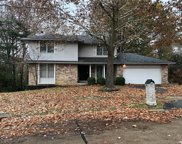 11234 Crested View, St Louis image