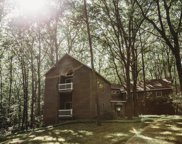 16561 Greenly Street, Holland image