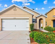 10506 Whispering Hammock Drive, Riverview image