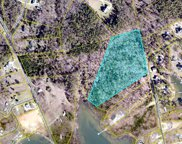 912 Willow Cove Road Unit #Tract 4, Chapin image