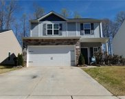 1226  Doby Springs Drive, Charlotte image